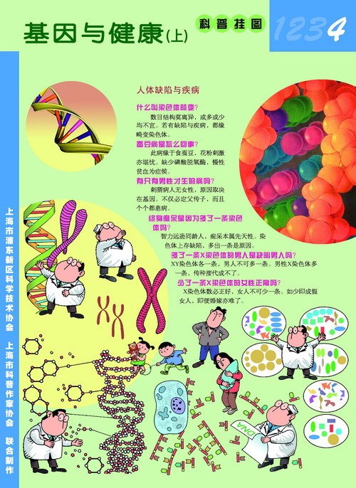 科普挂图:《防止传染病的蔓延》(下一篇: 科普挂图:《防止传